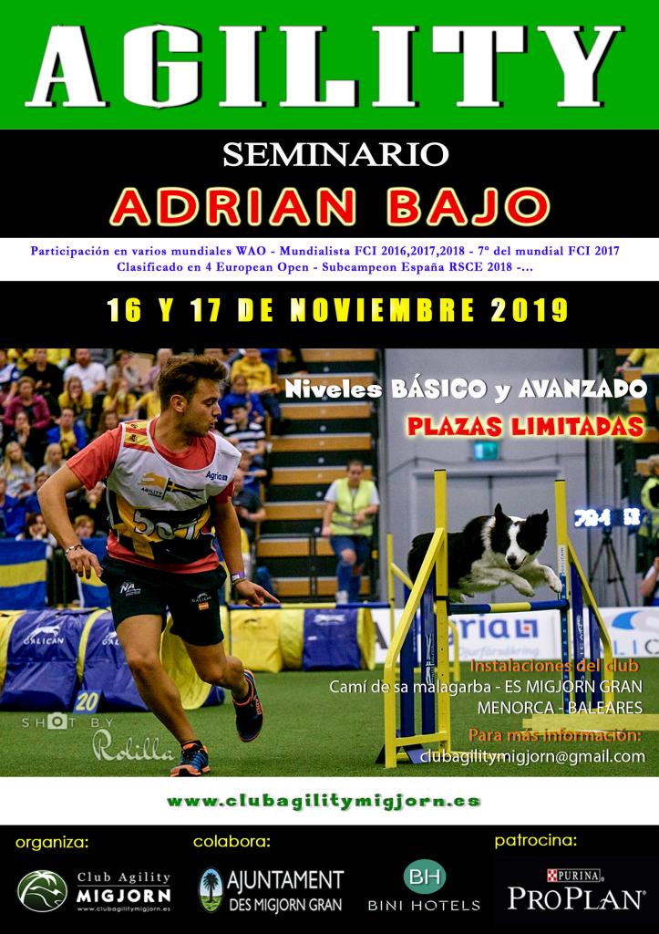Cartel SEMINARIO ADRIAN BAJO - NOVIEMBRE 2019