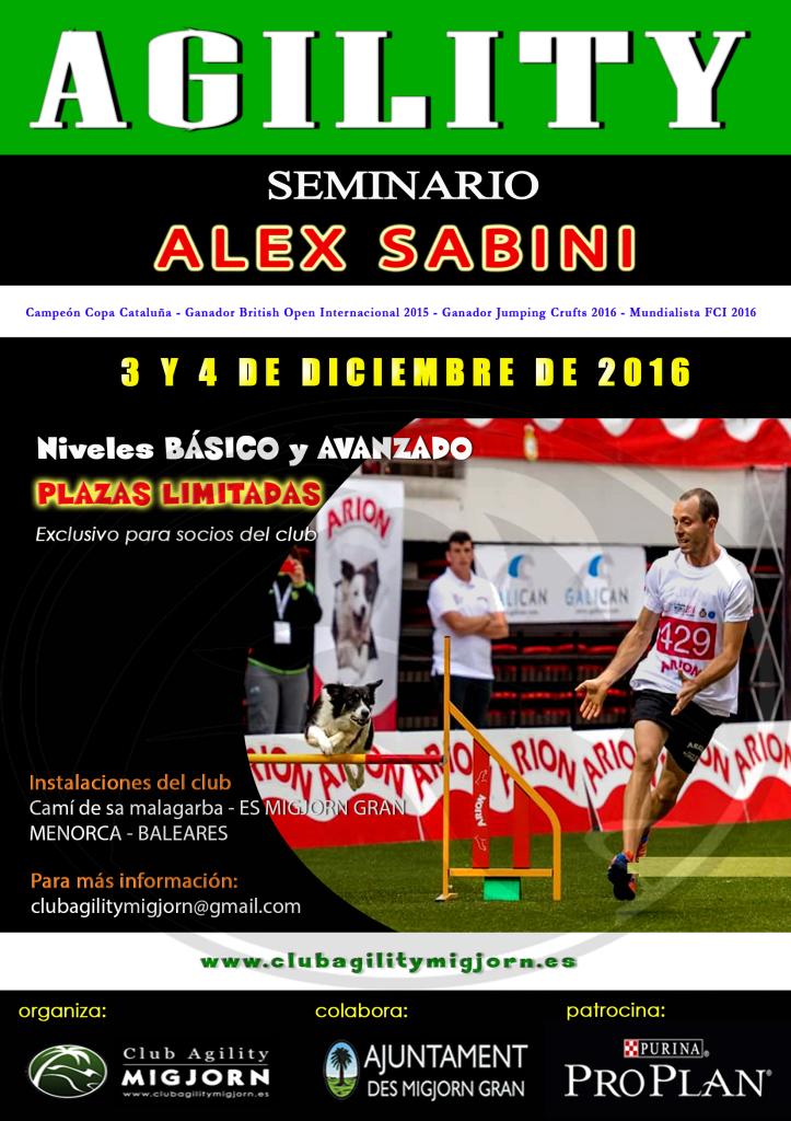 cartel-seminario-alex-sabini-2016