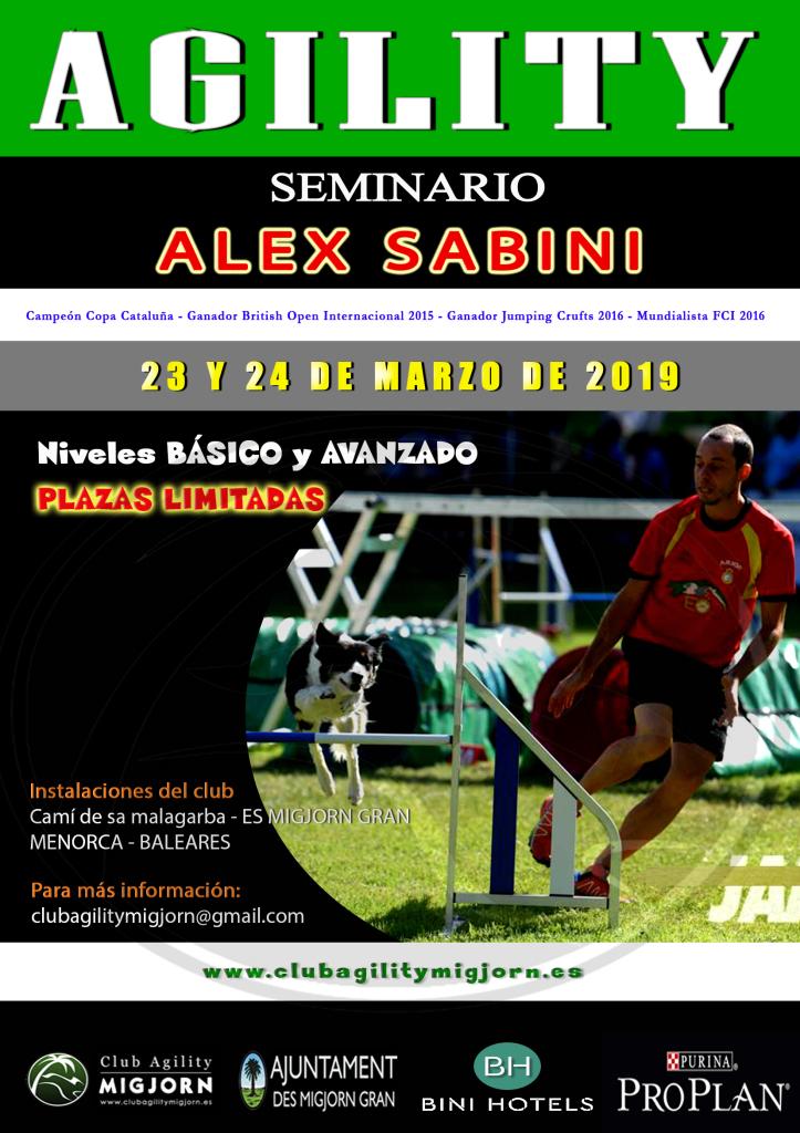 Poster seminario Alex Sabini - Marzo 2019